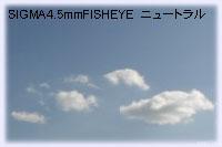 SIGMA4.5mmニュートラル