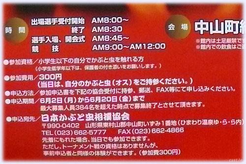 かぶと虫 相撲大会のスケジュール