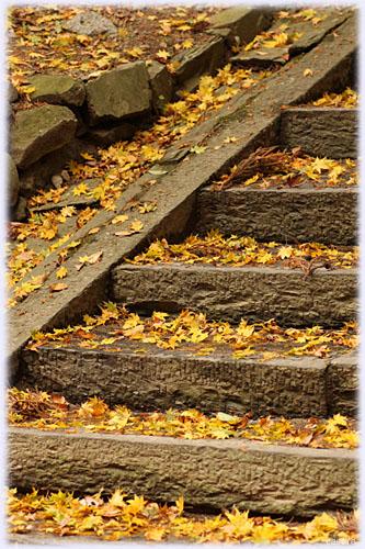 塩竈神社の紅葉