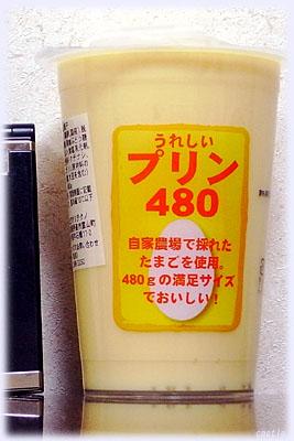 うれしいプリン(480g)