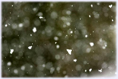4月の大雪