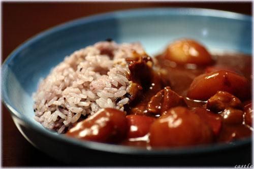 十五穀米カレー