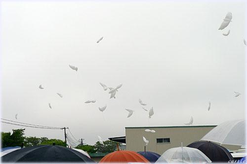 鳩風船飛ばし