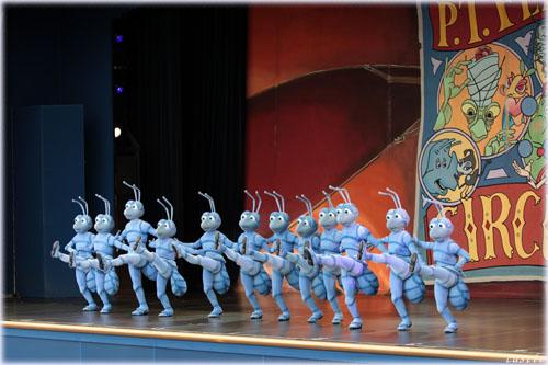 アリのラインダンス