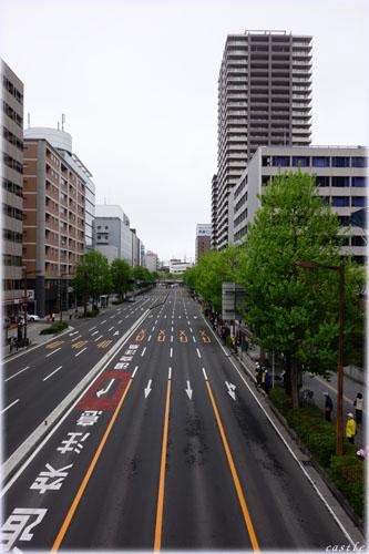 仙台国際ハーフマラソンコース