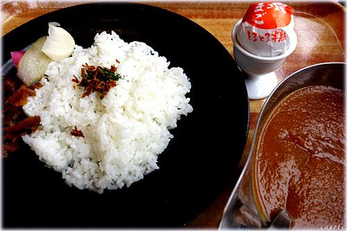 野菜ピューレカレー(辛口)