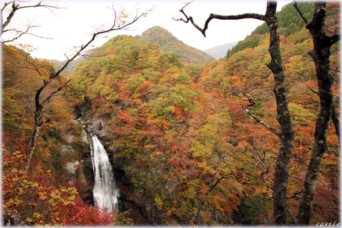 秋保大滝と紅葉
