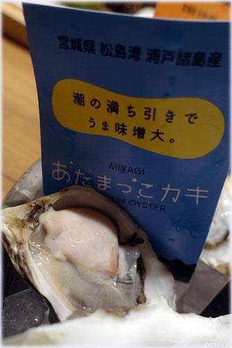 宮城県・松島湾の瀬戸諸島産「あたまっこカキ」