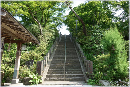 少林山達磨寺