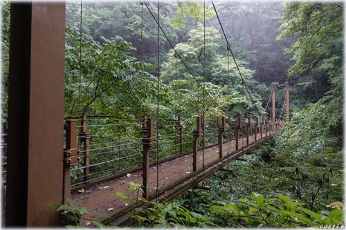 つり橋@高尾山