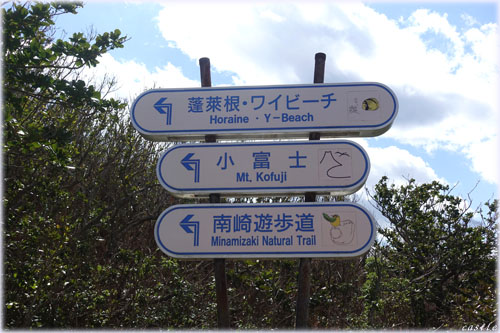 南崎遊歩道