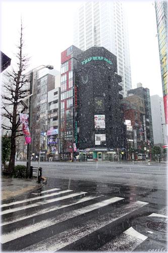 3月29日の雪