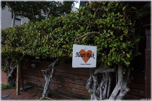HeartRockCafe
