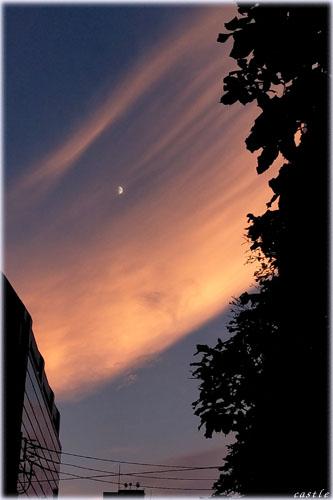 夕焼け雲の川